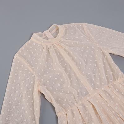 Long-Sleeve-Mesh-Dress-﹠-Lace-Waist-Sealing-Set-K1053-17