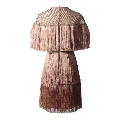 Tassel Mesh Mini Dress K349 9